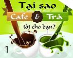 cafe1-5881-1405877917.jpg