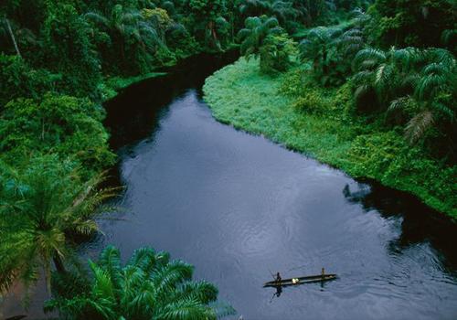 The-Congo-Basin-5603-1406112647.jpg