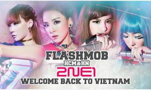 Fan Việt hưởng đặc quyền phỏng vấn trực tiếp 2NE1