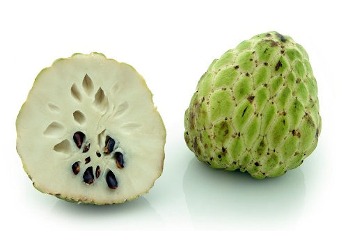 Custard-Apple-2016-1407685028.jpg
