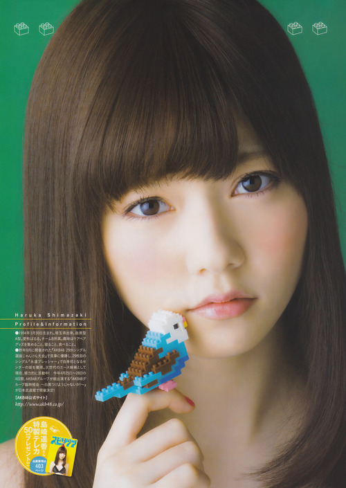 AKB48-Haruka-Shimazaki-Paruru-1739-8667-