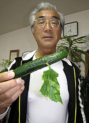 Fukushima-mutant-cucumber-6266-140785871