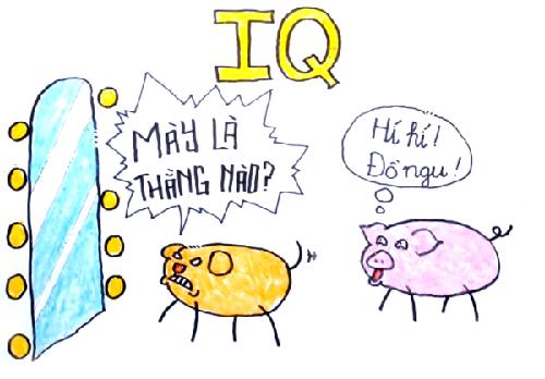 Lợn có thể sử dụng gương còn chó thì không ^^.