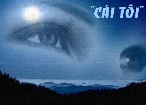 caitoi-1-8346-1408012272.jpg