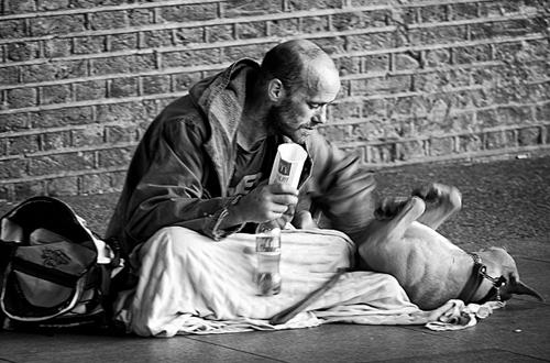 Chơi đùa, vuốt ve cún cưng đem lại niềm vui nho nhỏ cho những người vô gia cư.