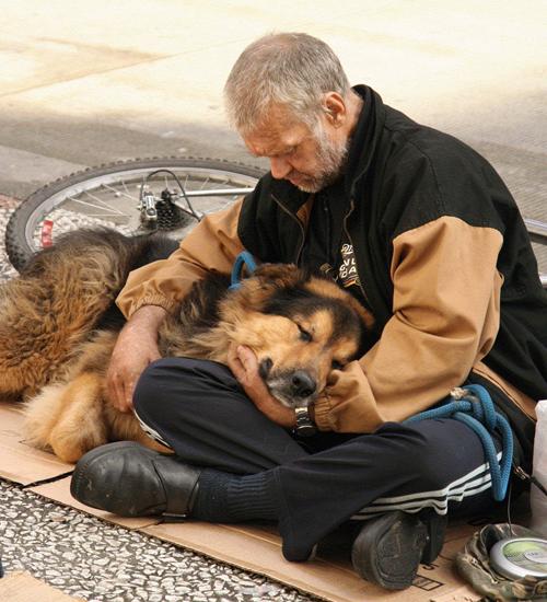 Chó cưng có ý nghĩa quan trọng với những người vô gia cư. Chúng trao cho họ tình yêu vô điều kiện trong khi phần đông xã hội quay lưng lại với họ. Chúng bảo vệ chủ khỏi những nguy hiểm trên đường phố.