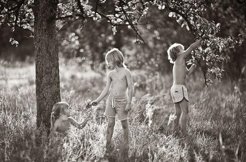 Trèo cây, hái quả là trò không thể thiếu của trẻ con.