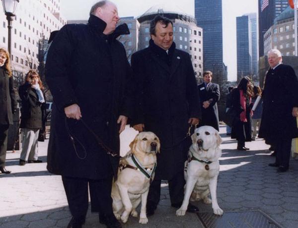 Hai chú chó dẫn đường Salty và Roselle đã được trao huân chương vì lòng trung thành với chủ. Cả hai đã theo sát chủ và dẫn họ xuống 70 tầng lầu an toàn trước khi trung tâm thương mại thế giới sụp đổ trong vụ khủng bố ngày 11/9/2001.