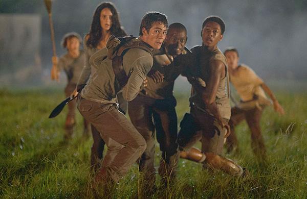 Giải Mã Mê Cung Từng được so sánh như là sự kết hợp giữa Lord of the Flies, The Hunger Games và series truyền hình nổi tiếng Lost