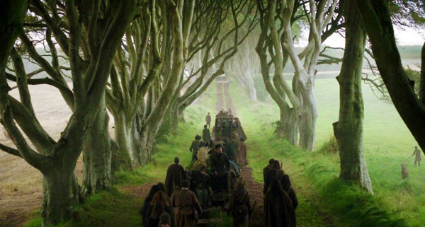The-Dark-Hedges-County-Antrim-4539-4389-