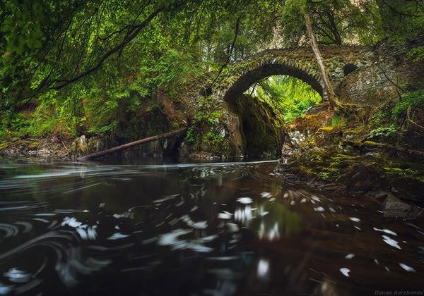 Cầu Hermitage cổ kính, ố màu rêu ở Scotland.
