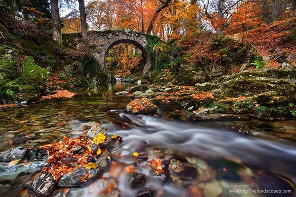 Cầu Tollymore nổi bật giữa khung cảnh mùa thu lãng mạn trong Công viên quốc gia Anh.