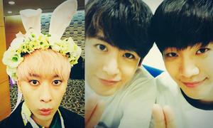 Sao Hàn 6/10: Jun Ho tỏ tình với Nich Khun, Chan Sung hóa thỏ