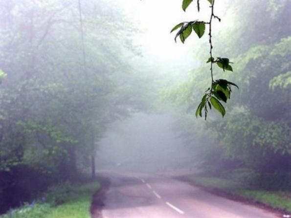 Trên con đường A229 đi từ Sussex đến Kent, Anh, nhiều tài xế xác nhận đã trông thấy một người phụ nữ trong trang phục trắng đi trước xe của họ. Khi họ hãm phanh lại,