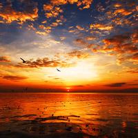 sunset-3-2212-1413169925.jpg
