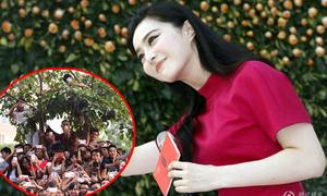 Fan đu cây, trèo tường ngắm Phạm Băng Băng