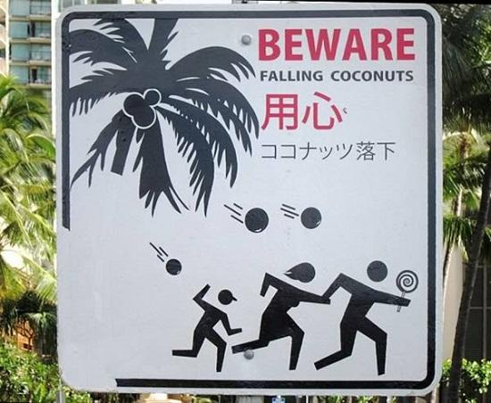 a99118-fell-sky-7-coconut-8443-141394675