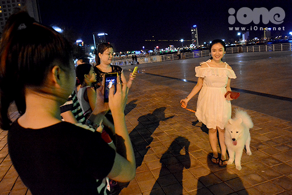 Hình 12  Nhiều người dân thường đến công viên bên sông Hàn để làm quen, chụp ảnh cùng những chú chó dễ thương.