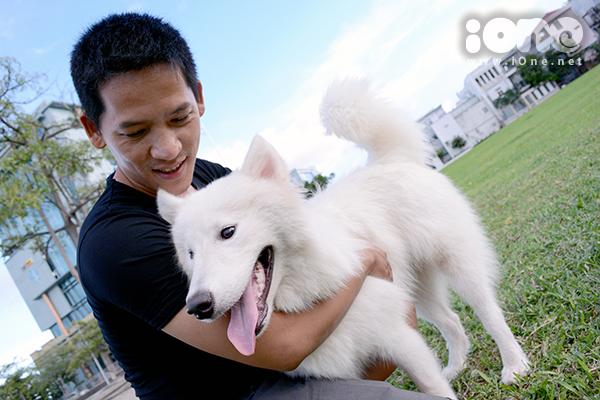 Theo Đăng An, Samoyed là giống chó được nuôi nhiều nhất. Alaska, Husky Sibir cũng được nhiều bạn trẻ ưa chuộng. Có người nuôi 2 - 3 con.