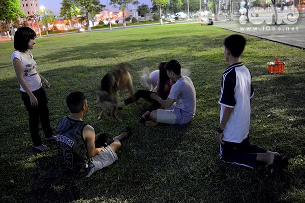 Nhiều người nuôi chó cảnh như chị Diệp thường dắt chó đi bách bộ, chạy nhảy vì sức khỏe của thú nuôi. Loài này lớn rất nhanh. Nhốt mãi trong nhà, chân của chúng thường bị khòm do không đỡ được trọng lượng của cơ thể. Mình thường đưa nó ra công viên để chạy nhảy cho khỏe mạnh, anh Tân, một thành viên của hội, chia sẻ.