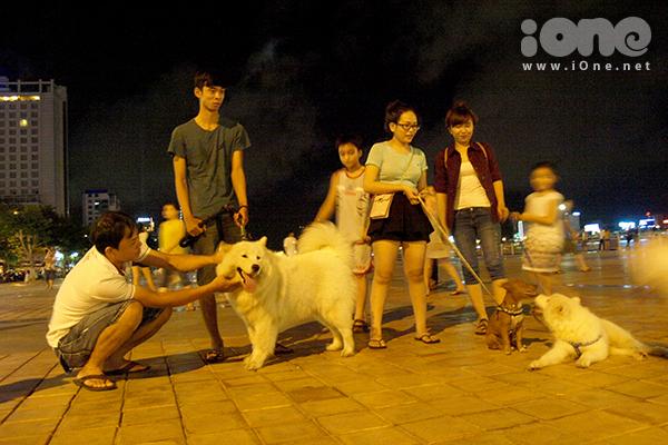 Những hoạt động giao lưu của hội yêu thú cưng làm công viên bên sông Hàn trở nên đông vui, náo nhiệt vào buổi tối.