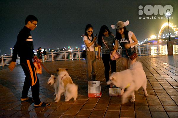 thường dẫn thú cưng ra công viên bên sông Hàn hằng đêm để người dân ngắm nhìn, chụp ảnh lưu niệm.
