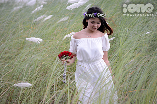 Nhiều bạn nữ điệu đà tạo hình giữa cánh đồng lau trắng muốt...