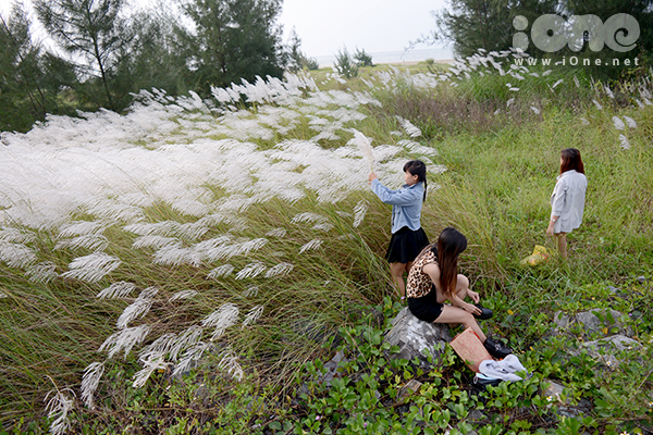 Đông nhất vào buổi chiều, nhiều tốp bạn đến những địa điểm quen thuộc ở Sơn Trà, khu vực Thuận Phước, khu Tiên Sơn& để chụp ảnh.