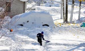 Nước Mỹ 'đóng băng' trong tuyết dày 2,4m
