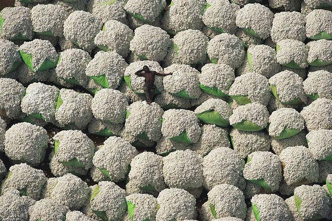 Yann-Arthus-Bertrand-18-1420598003_660x0