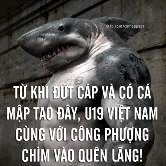 anh-che-ca-map-1-7312-1420624529.png
