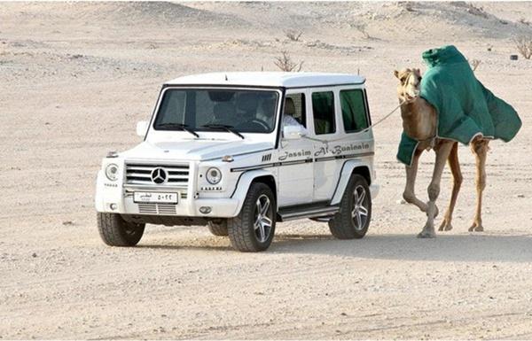 Dắt lạc đà qua sa mạc bằng Mercedes G63 trị giá gần 250.000 USD.