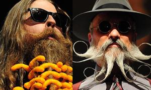 Bộ sưu tập râu độc đáo không giống ai