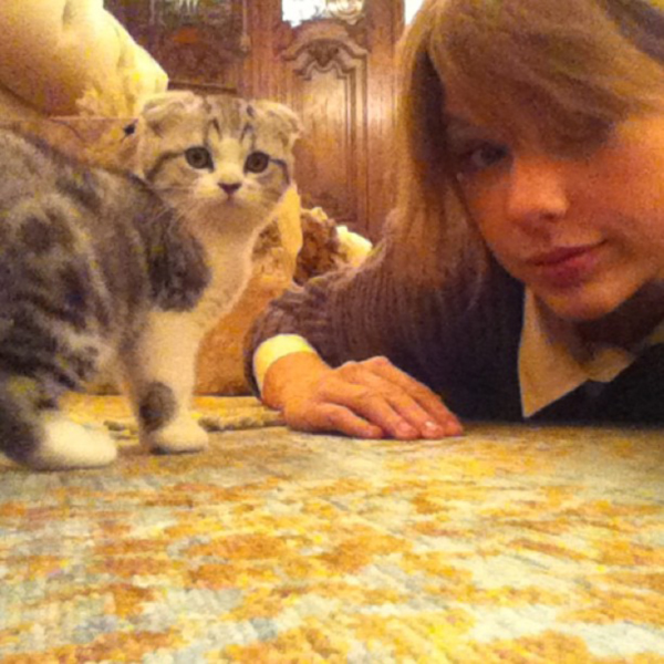 Taylor-and-Meredith-3257-1426401772.jpg