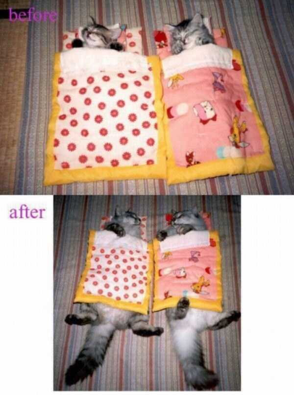 before-and-after-3-7282-1427036309.jpg