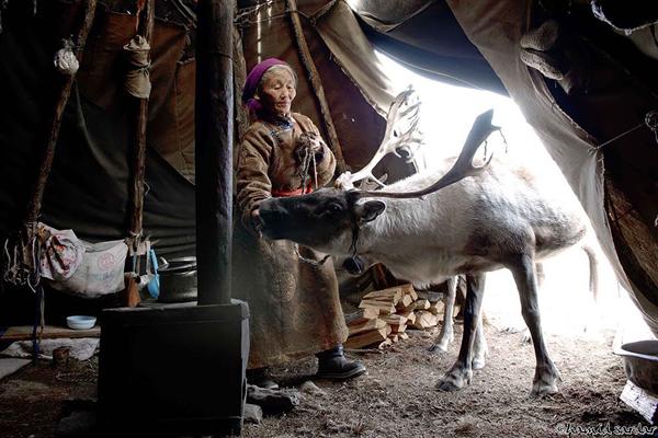 Trong điều kiện thời tiết khắc nghiệt, họ phải di chuyển liên tục và sống tạm bợ trong những túp   lều đơn sơ.