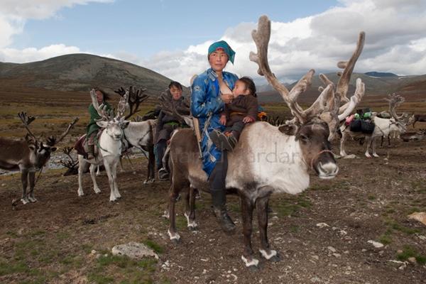 Người Dukha hiện chỉ còn khoảng 44 gia đình với 200 - 400 người. Thu nhập chủ yếu của họ   đến từ việc bán các sản phẩm thủ công cho khách du lịch và cho du khách thuê cưỡi tuần lộc.