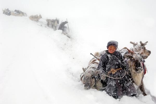 reindeer-people-hamid-sardar-a-9820-4672