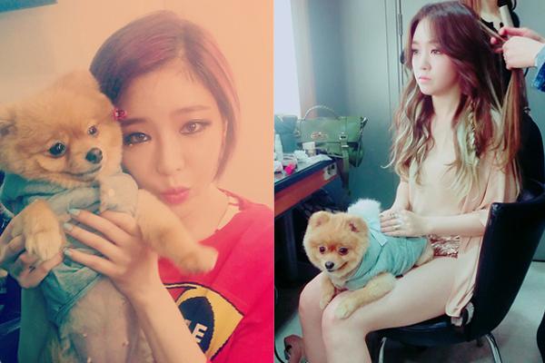 Gain (BEG) và Min Ah (Girls' Day)