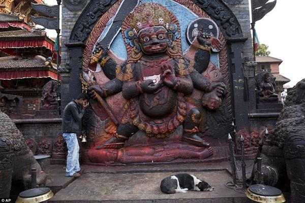 Một người đàn ông cầu nguyện trước tượng thần Bhairav của đạo Hindu ở quảng trường    Basantapur Durbar, chú chó trung thành nằm đợi bên cạnh.