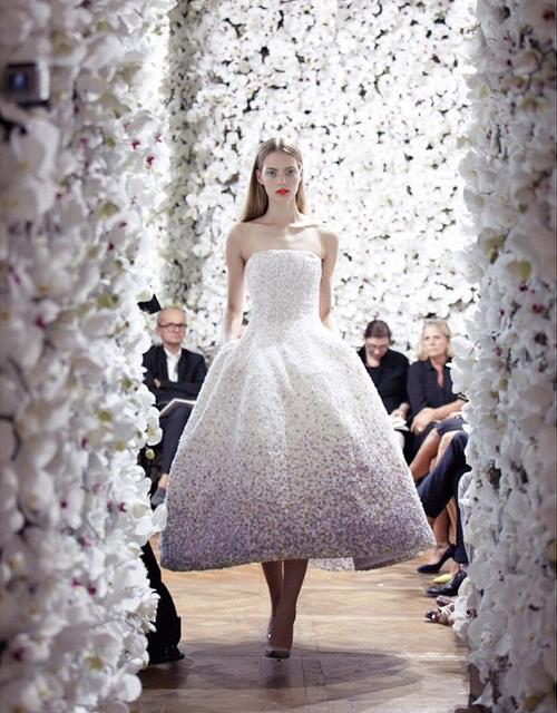 Sau đó, cô mẫu trẻ liên tục nhận được lời mời làm mẫu và quảng cáo cho các thương hiệu   đình đám như Chloe, Alexander McQueen, Prada, Chanel và Calvin Klein.