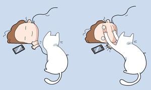 Truyện tranh: 10 'đặc ân' chỉ những người nuôi mèo mới có được