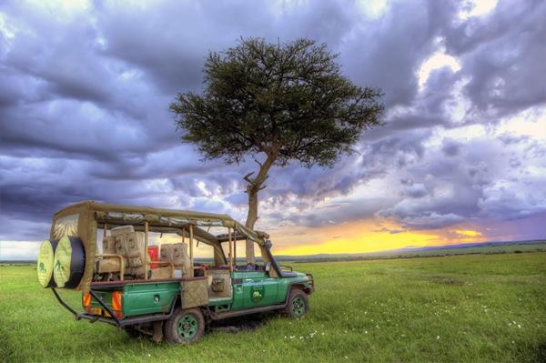 Công viên quốc gia Serenget, Tanzania: Hãy tắt điện thoại, và thưởng thức sự bình yên của thiên nhiên nơi đây.