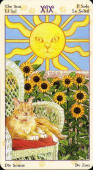 the-sun_1437175579.jpg