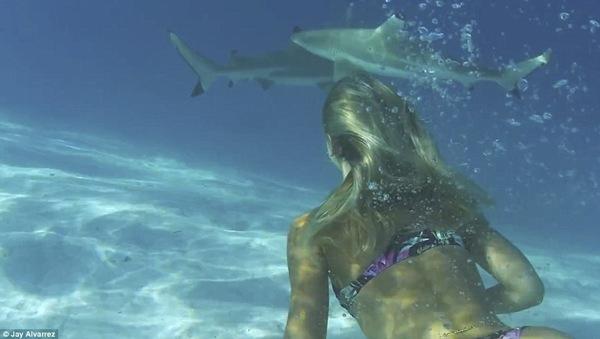 Cuộc sống của họ ngày này qua ngày khác là những chuyến bơi cùng cá mập, lướt sóng...