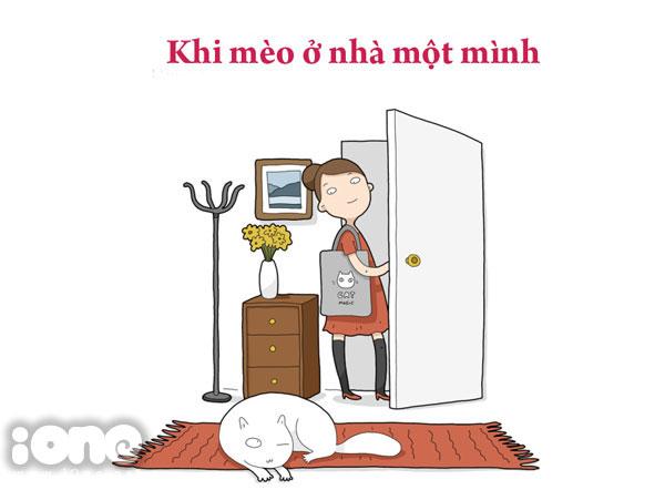 Con mèo nhà bạn làm gì khi ở nhà một mình?