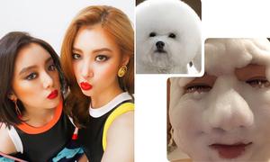 Sao Hàn 3/8: Tạo hình comback của Wonder Girls, Jo Kwon hóa cún