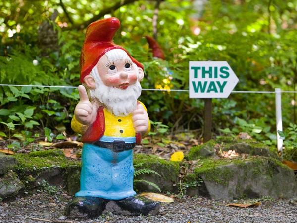 Vườn chú lùn (Gnome Reserve), Devon Người hâm mộ đồ trang trí cỏ có thể đi du lịch vào đây để xem hơn 1.000 thần lùn và các nàng tiên trong môi trường sống tự nhiên. Nơi đây còn có hơn 250 loài hoa dại.