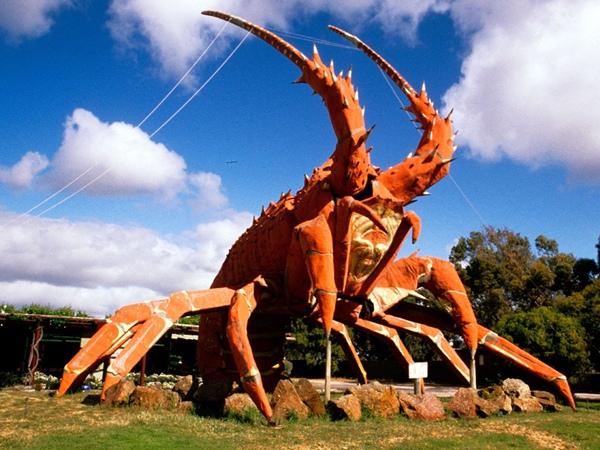 Tượng Tôm Khổng Lồ ở Australia sẽ dành cho những bạn mê hải sản. Mô hình này được dựng lên nhằm quảng cáo