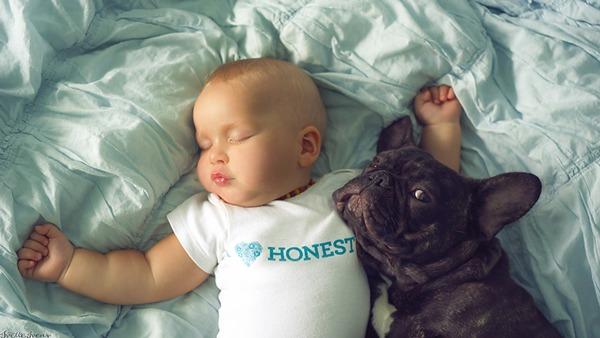 Cún Farley vừa khéo léo lại vừa lóng ngóng vì cún ta vẫn còn đang độ tuổi baby mà.